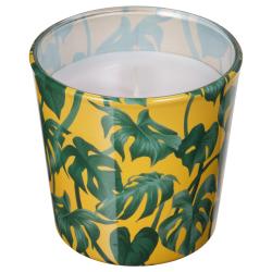 AVLÅNG Vela sin perfume en vaso