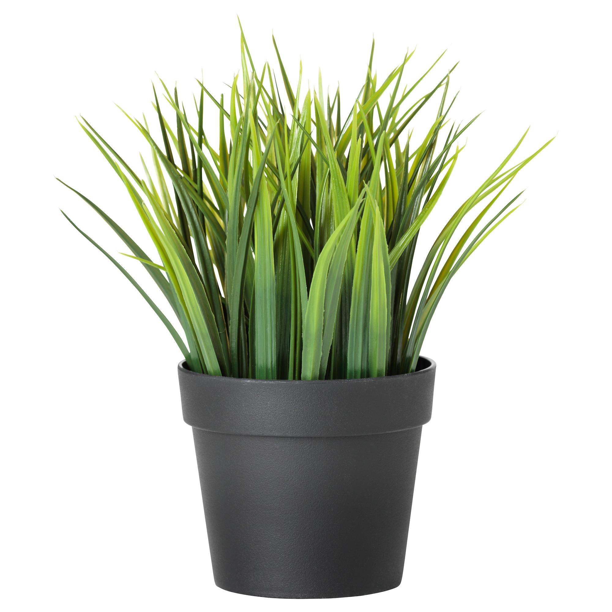 Fejka planta artificial en maceta - Plantas artificiales en ikea ...